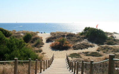 Portugal has 12 more beaches awarded the Blue Flag